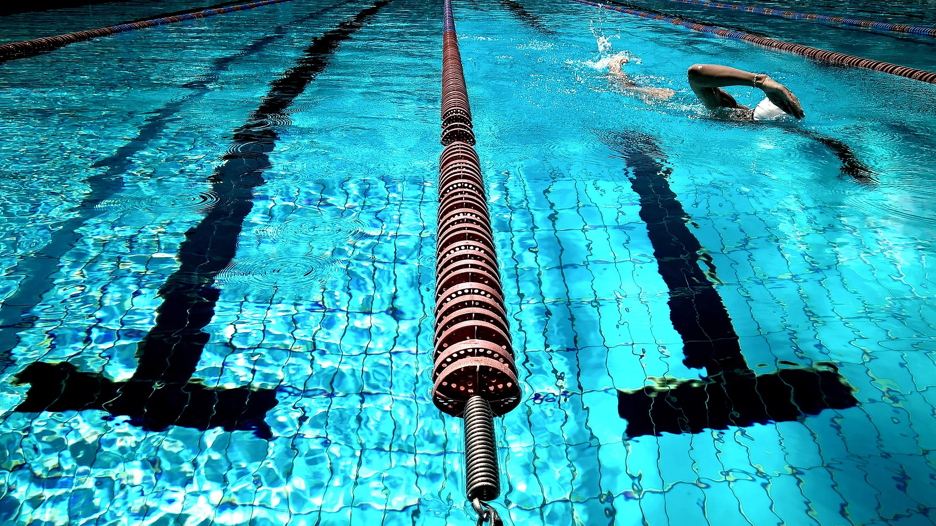 swimming-Image by StockSnap from Pixabay